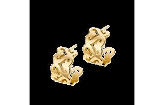 Passionata earrings